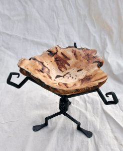 Sugar Maple Burl